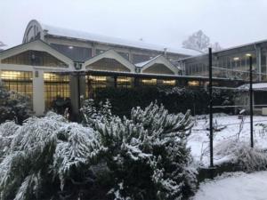 2019-nevicata