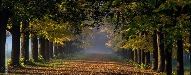 villa-reale-monza-autunno